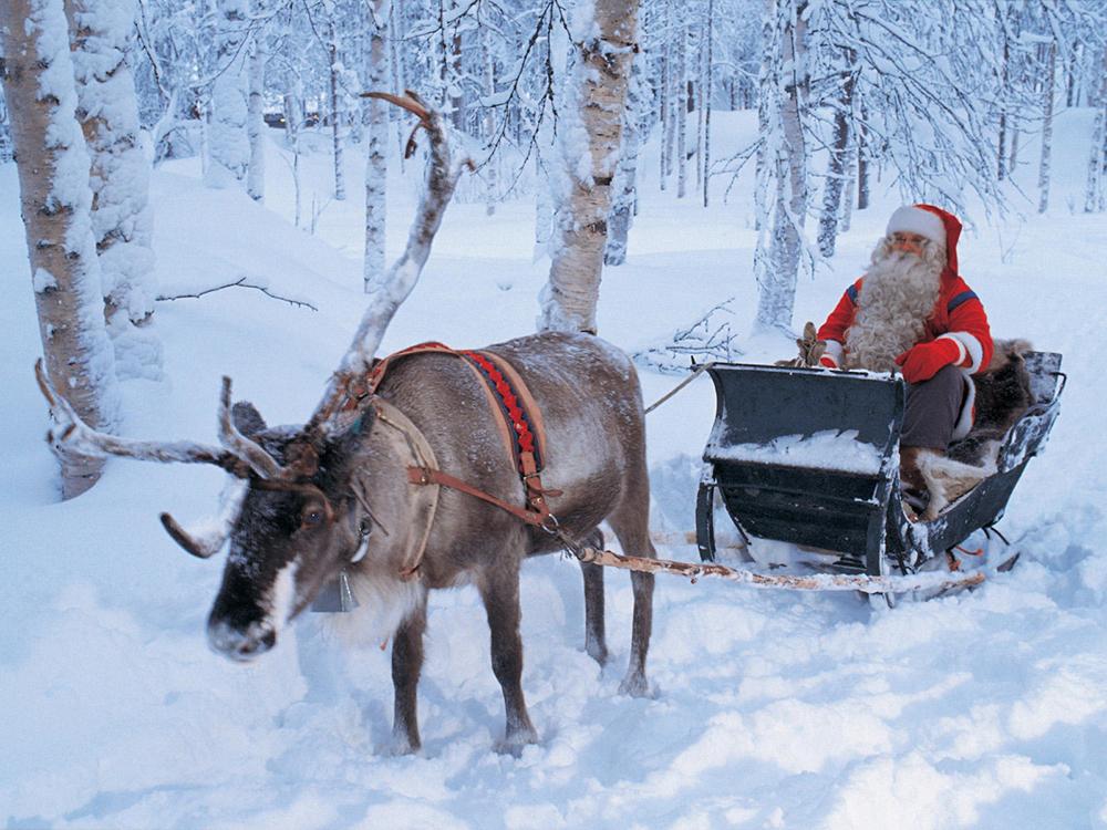 Renna di Babbo Natale