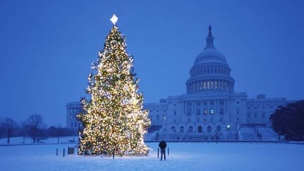 Albero Di Natale Washington.Alberi Di Natale Piu Belli